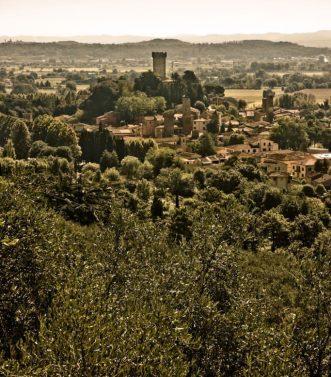 oliveta sapra vico
